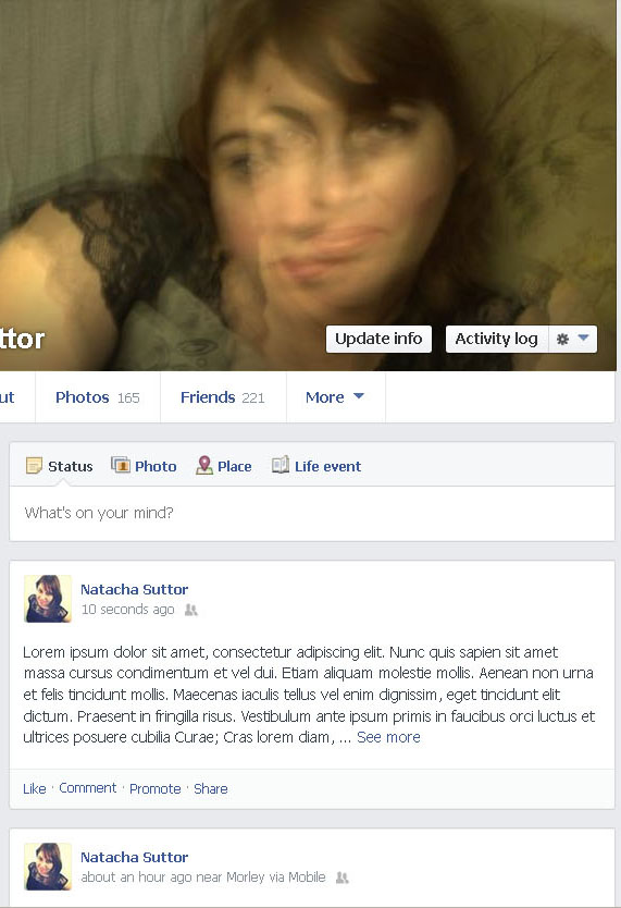 Screenshot of truncated status update on Facebook profile page (Taken 16 September 2013)